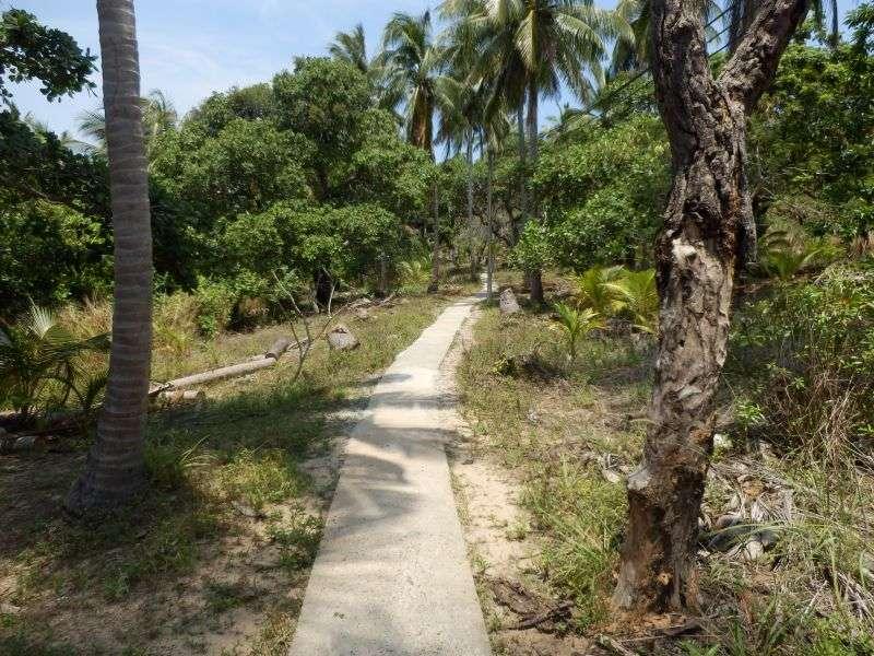 der schmale Weg zum Viewpoint 2